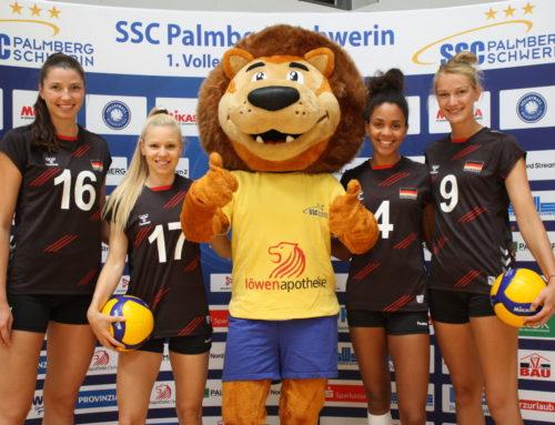 Volleyball EM mit geballter Schweriner Power